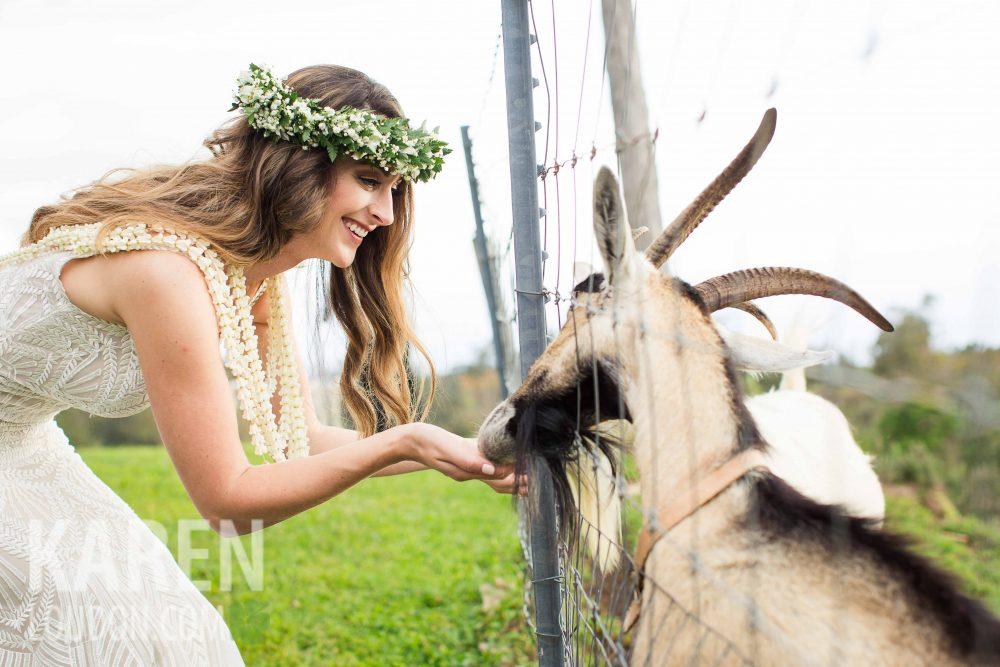 Hulualoa Goat Farm